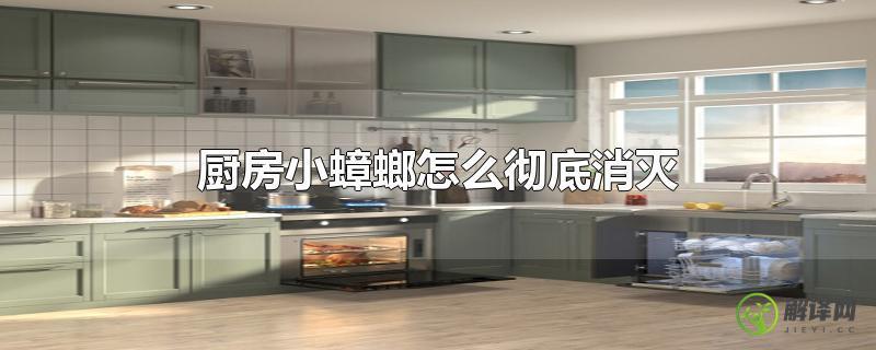 厨房小蟑螂怎么彻底消灭?