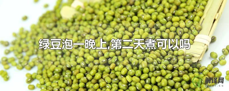 绿豆泡一晚上,第二天煮可以吗?