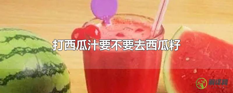 打西瓜汁要不要去西瓜籽?