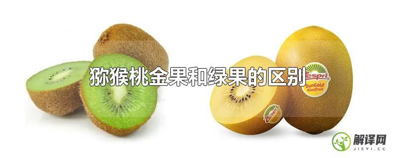 猕猴桃金果和绿果的区别?