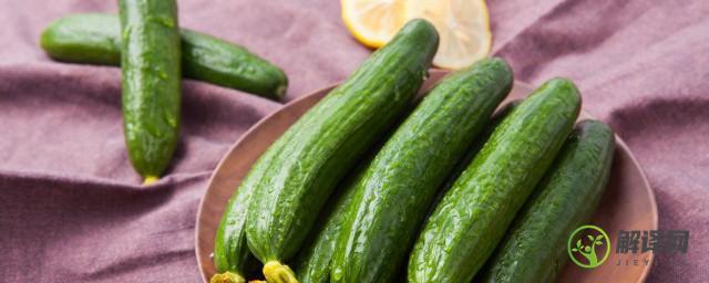 黄瓜含有什么营养价值,黄瓜的营养价值?